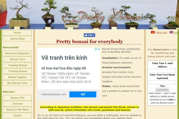 Pretty Bonsai Homepage
